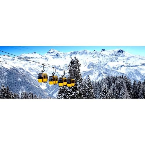 Deposé Alpine 2000