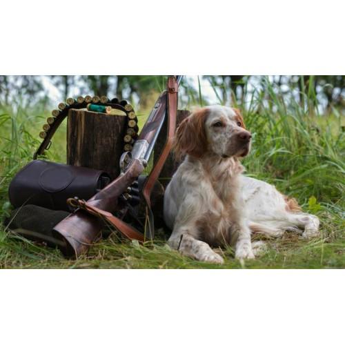 Silbato de ultrasonidos para entrenamiento canino