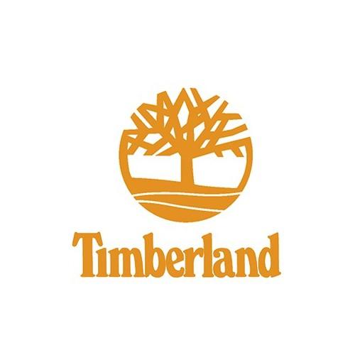 Zapatos Timberland Bradstreet Casual Gore-tex