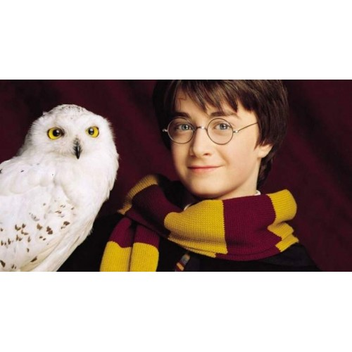 Harry Potter Hedwig la Lechuza