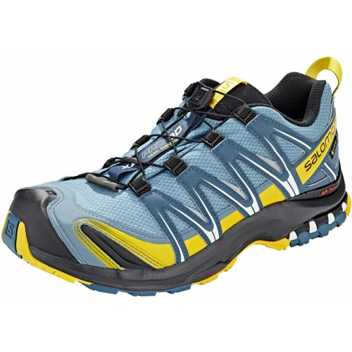 Salomon Zapatilla deportiva XA Pro 3D GTX Bluest Indian