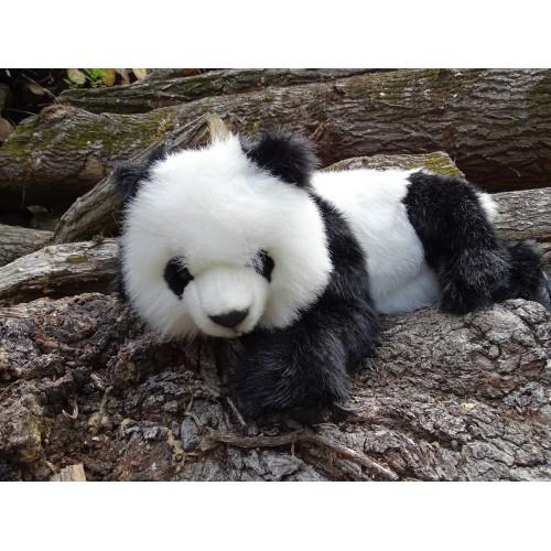 Hansa Oso Panda acostado