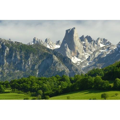 Dolomite Steinbock Low GTX