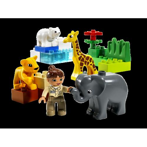 4962 Baby Zoo