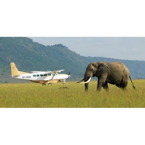 42043 Avioneta Safari