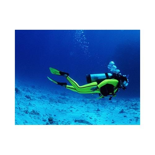 42329 Set fondo marino