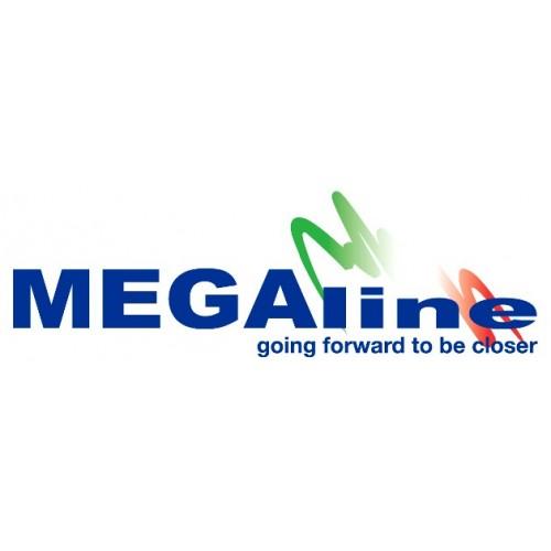 Megaline Caja Porta-munición M .243, .308 etc...