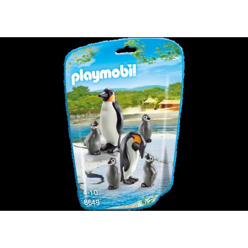 6649 Familia de pingüinos
