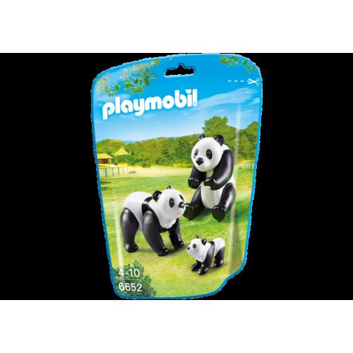 6652 Familia de pandas